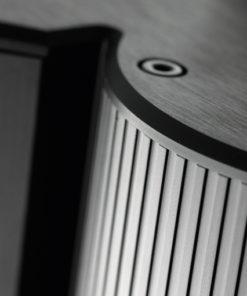 Gryphon Antileon EVO mono power amplifier detail